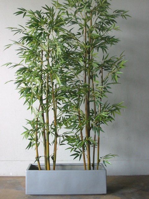 bamboo_w_long_planter_l.jpg