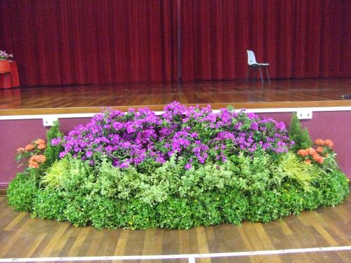 Plants Display for Event Stage - Plants Centre Grouping
