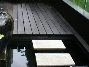 Koi Pond 2