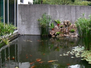 Skyland gardening koi pond for Artificial pond water