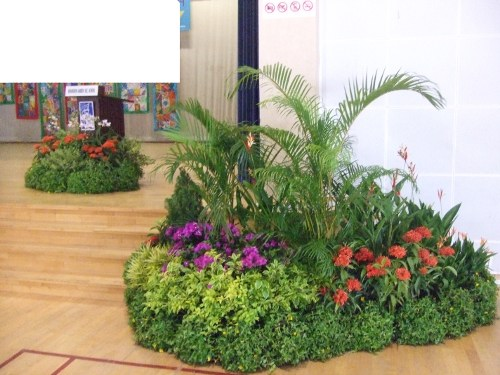 Event-Display-Grouping-On-Stage