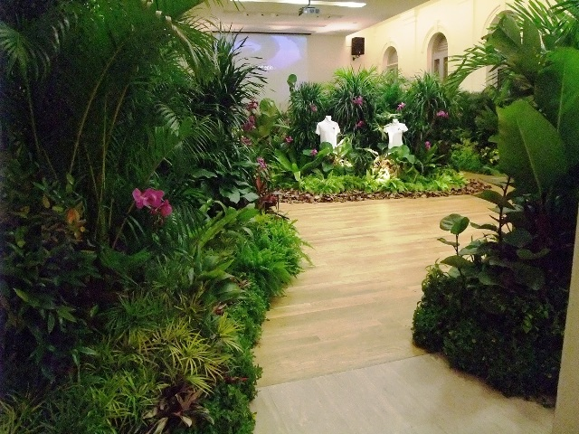Tropical Theme Plants Display