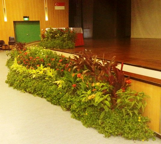 Event Plant Display - Stage front centre grouping at Catholic High Sec Sch