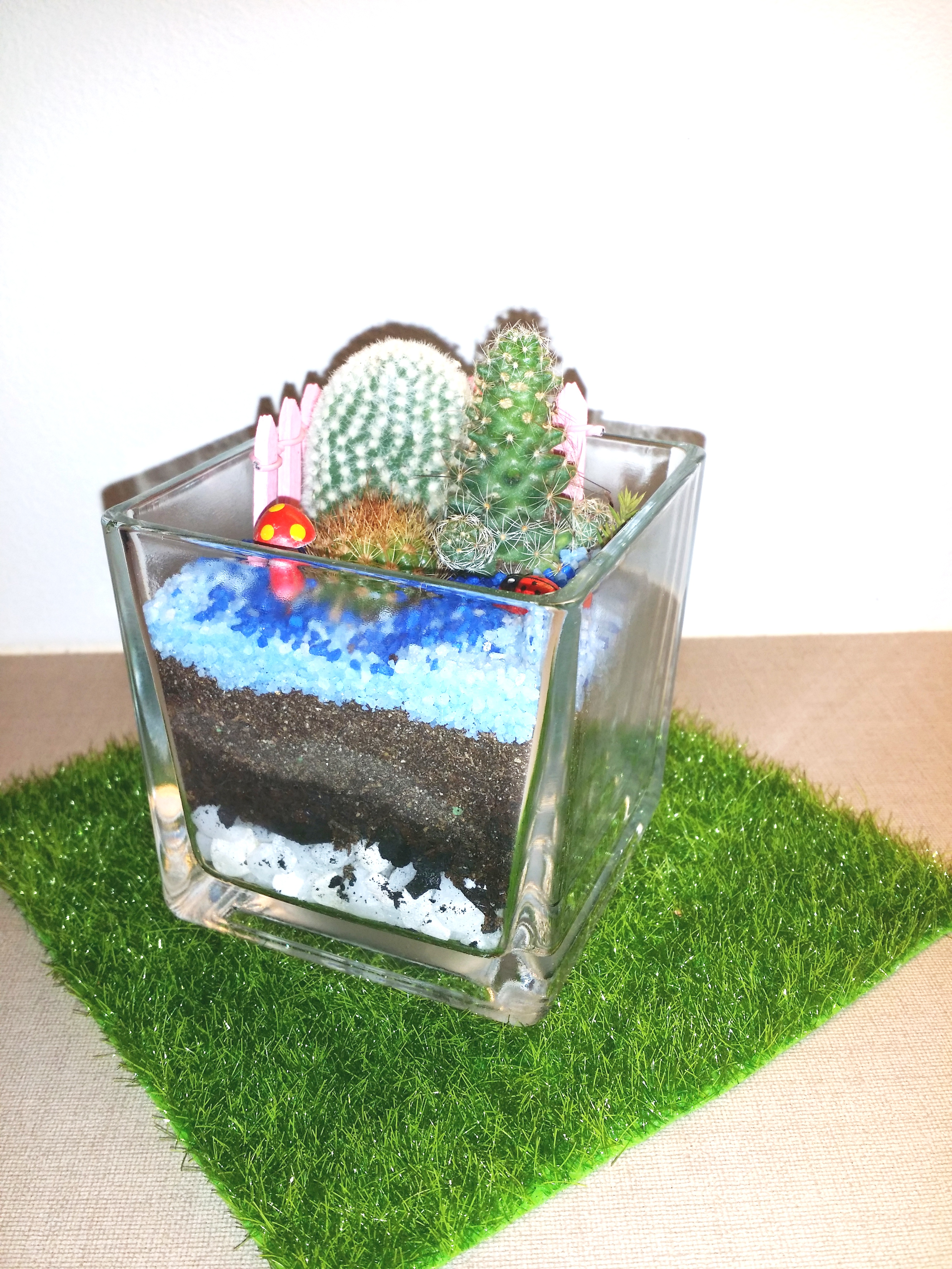 Mini-Sq85cmX85cm-Terrarium